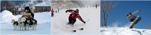 飞鹤高兴游冰雪奇缘 | 长白山万达滑雪、魔界、雾凇岛轻奢质量双飞五日