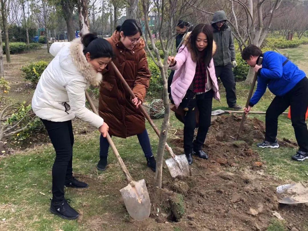 啬园任务植树运动圆满完毕