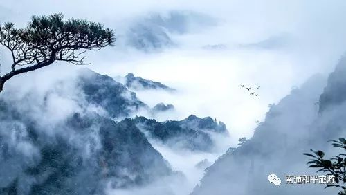 ¥498元 黄山-灵山油菜花--新安江--花山谜窟