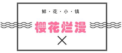 最新谍照!3月31日南通鲜花小镇美羽化境!300万株郁金香&樱花等你来!