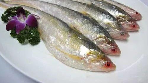 @南通人,吃刀鱼的时节来了,南通刀鱼价钱先晓得