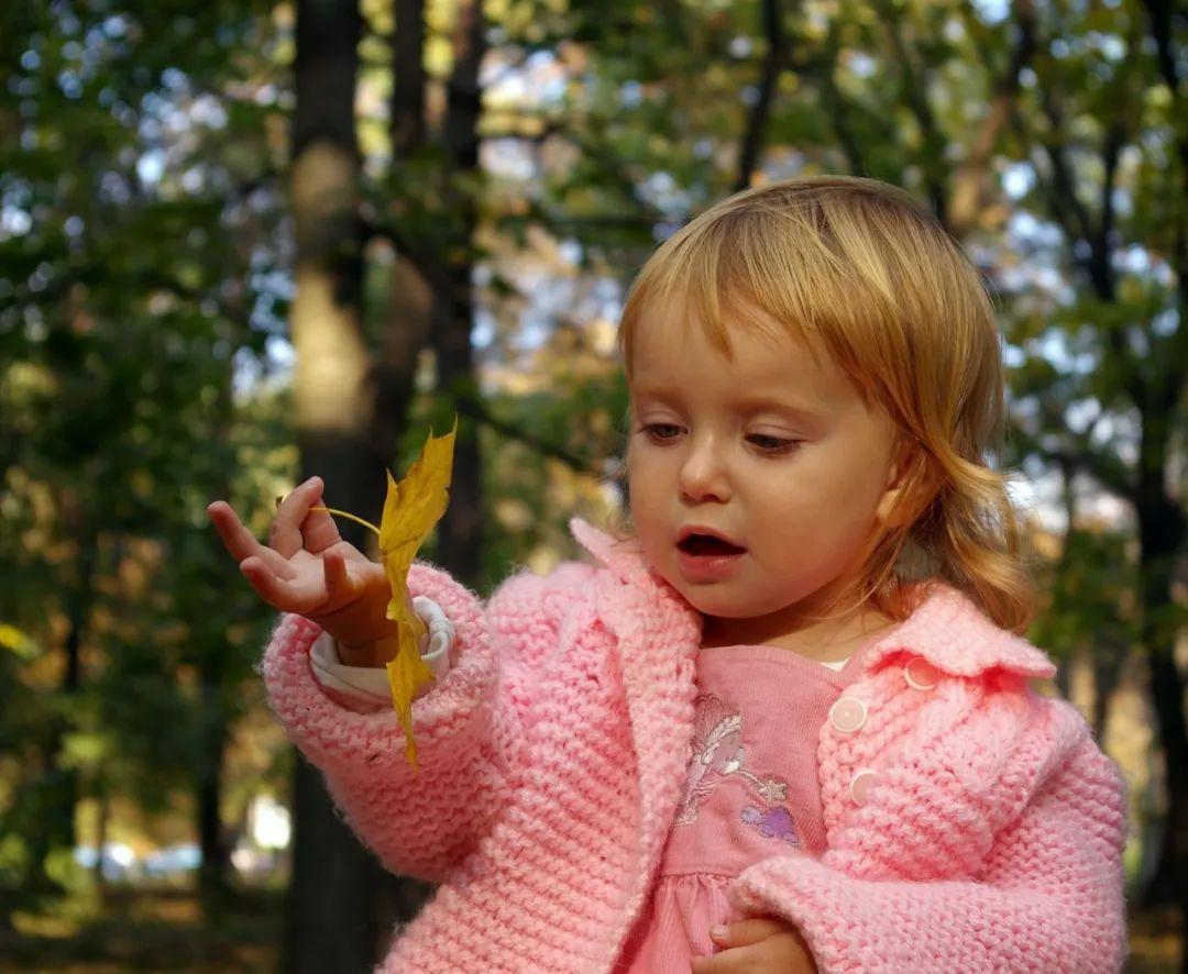 【爱育幼童】孩子若不懂与天下怎样相处,一切的教诲都是白费的