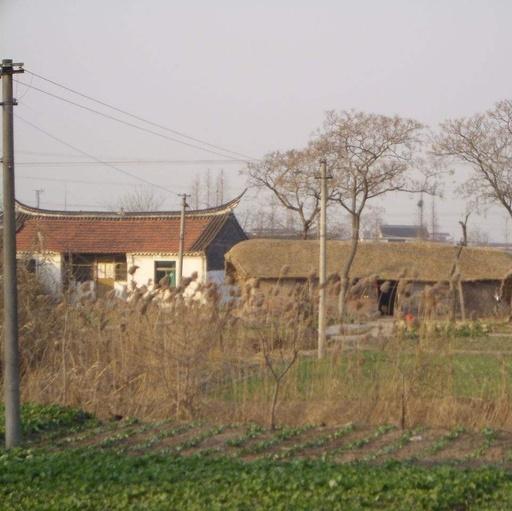 乡村有屋子的南通人留意了!往年起,这10类屋子能够被接纳