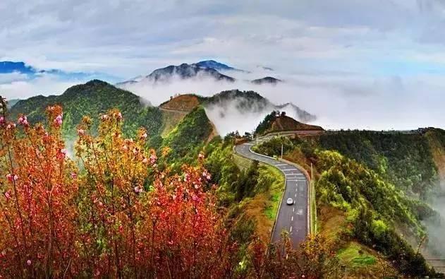 南通左近5条绝美自驾线路,私藏小众秘境,沿途景色美哭!