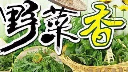 【通州实幼】春天野菜香