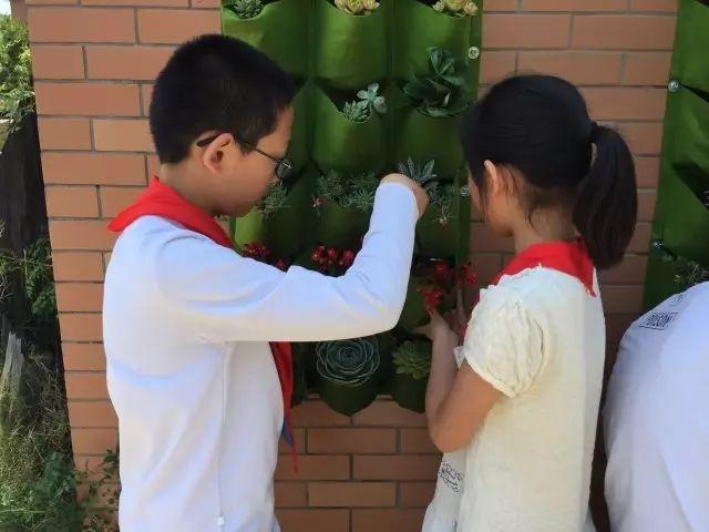 南通市实验小学环保作品展(一)