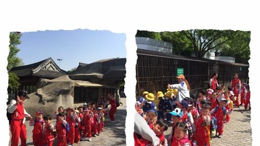 【园讯快报】春暖花开春游记——崇川区贝贝幼儿园春游活动报道