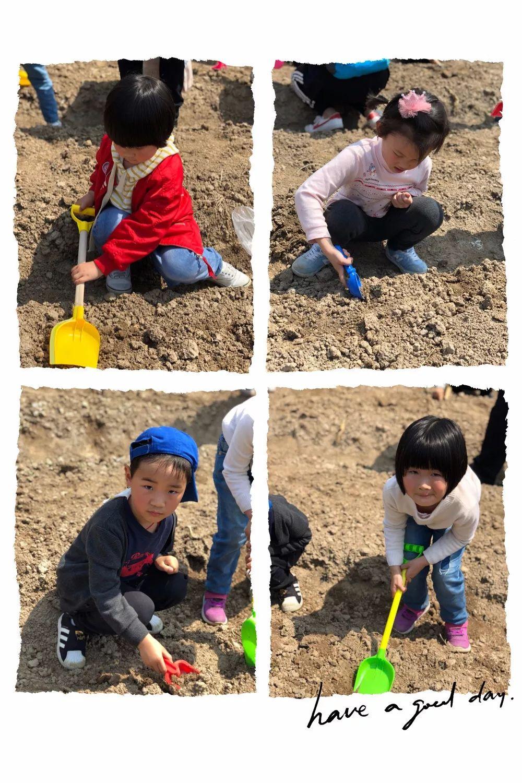 【通州实幼】高兴农场一日游