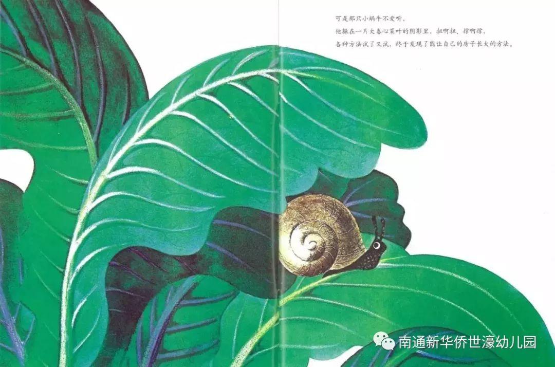 新华裔世濠幼儿园绘本引荐:天下上最大的屋子